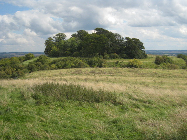 Castle Hill iron age fort - geograph.org.uk - 947045