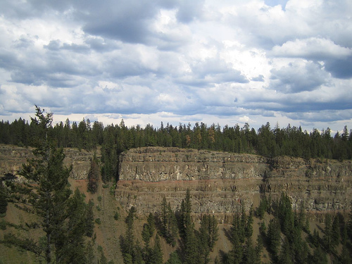 Chasm Provincial Park trees and flood basalts.jpg