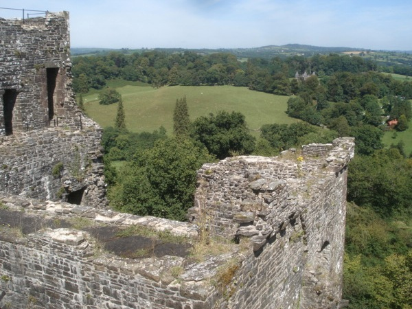 Dinefwr Park viewed from Dinefwr Castle
