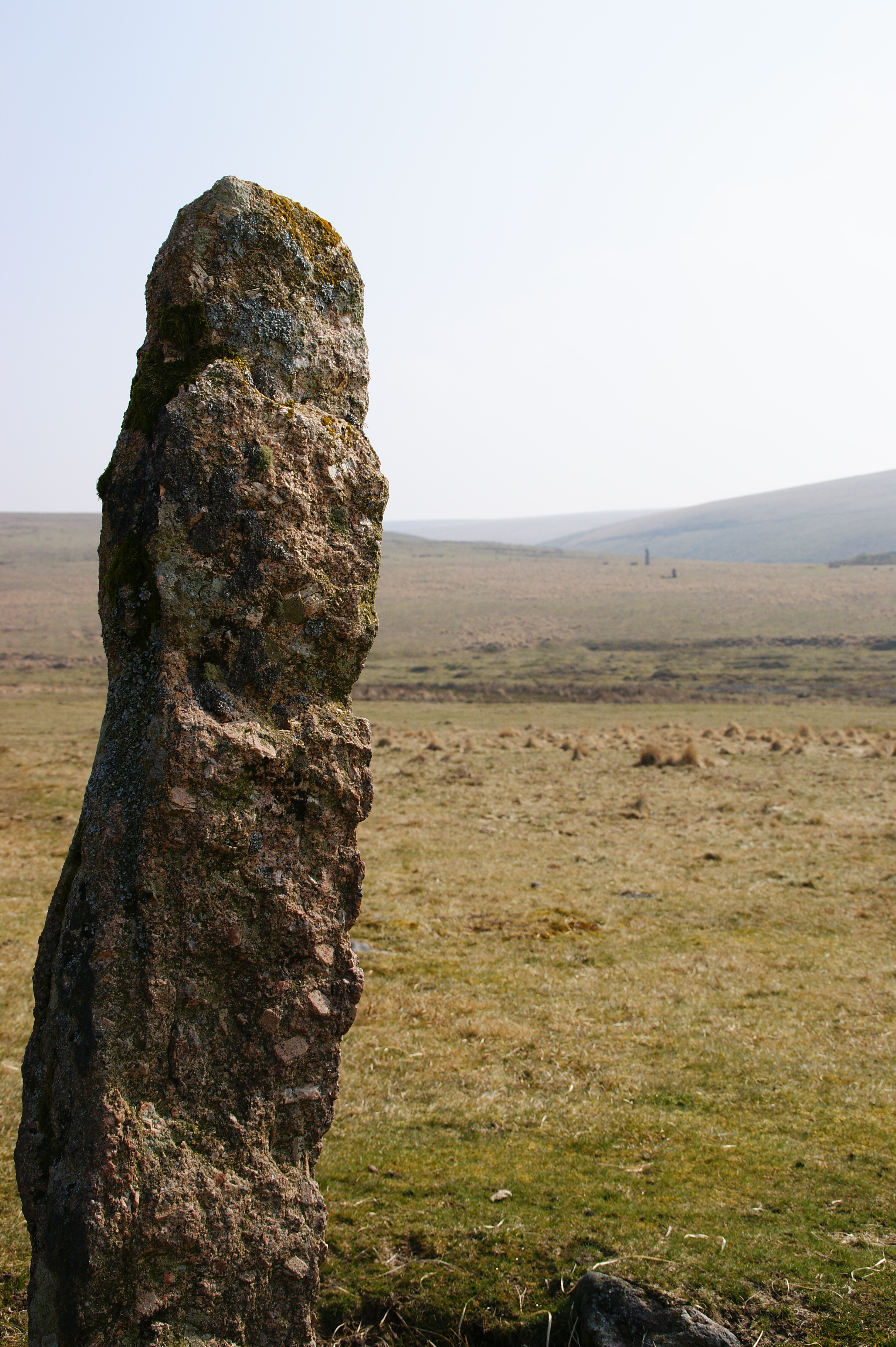 Menhir at Drizzlecombe