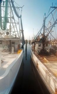 Fishing boats in Biloxi