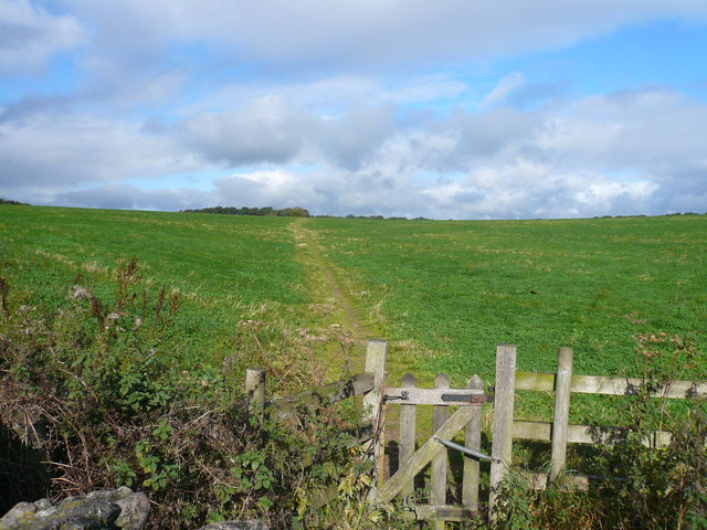 Footpath leading to Low Moor Wood - geograph.org.uk - 558605
