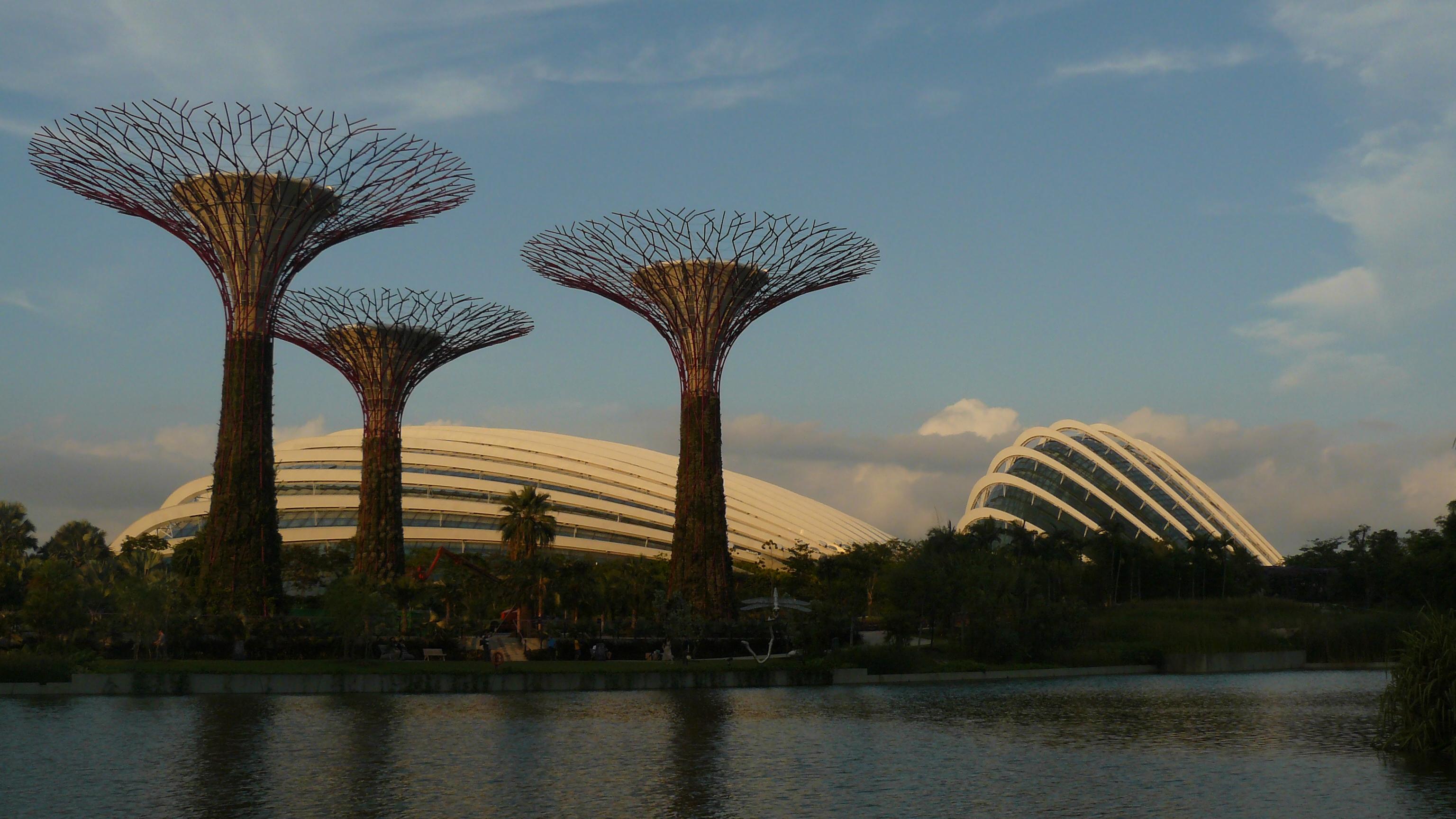 Pijpen in Singapore