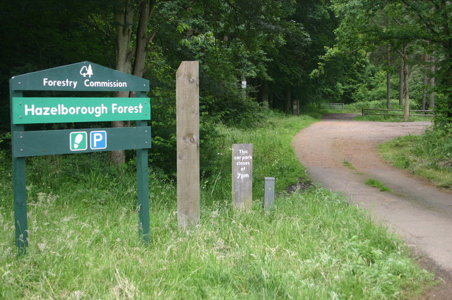 Hazelborough Forest - geograph.org.uk - 469497