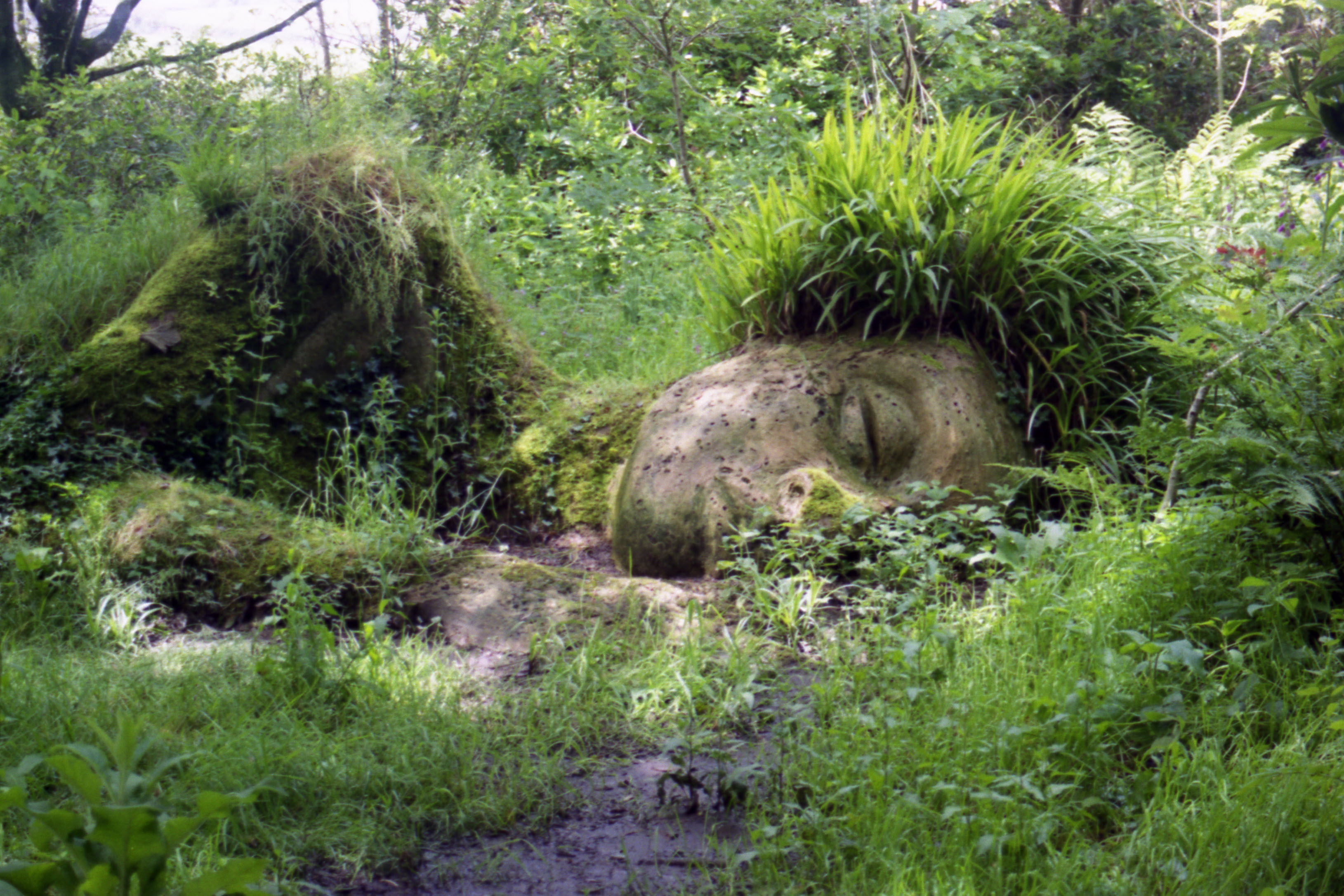 The lost gardens of heligan society x for Artiste nature