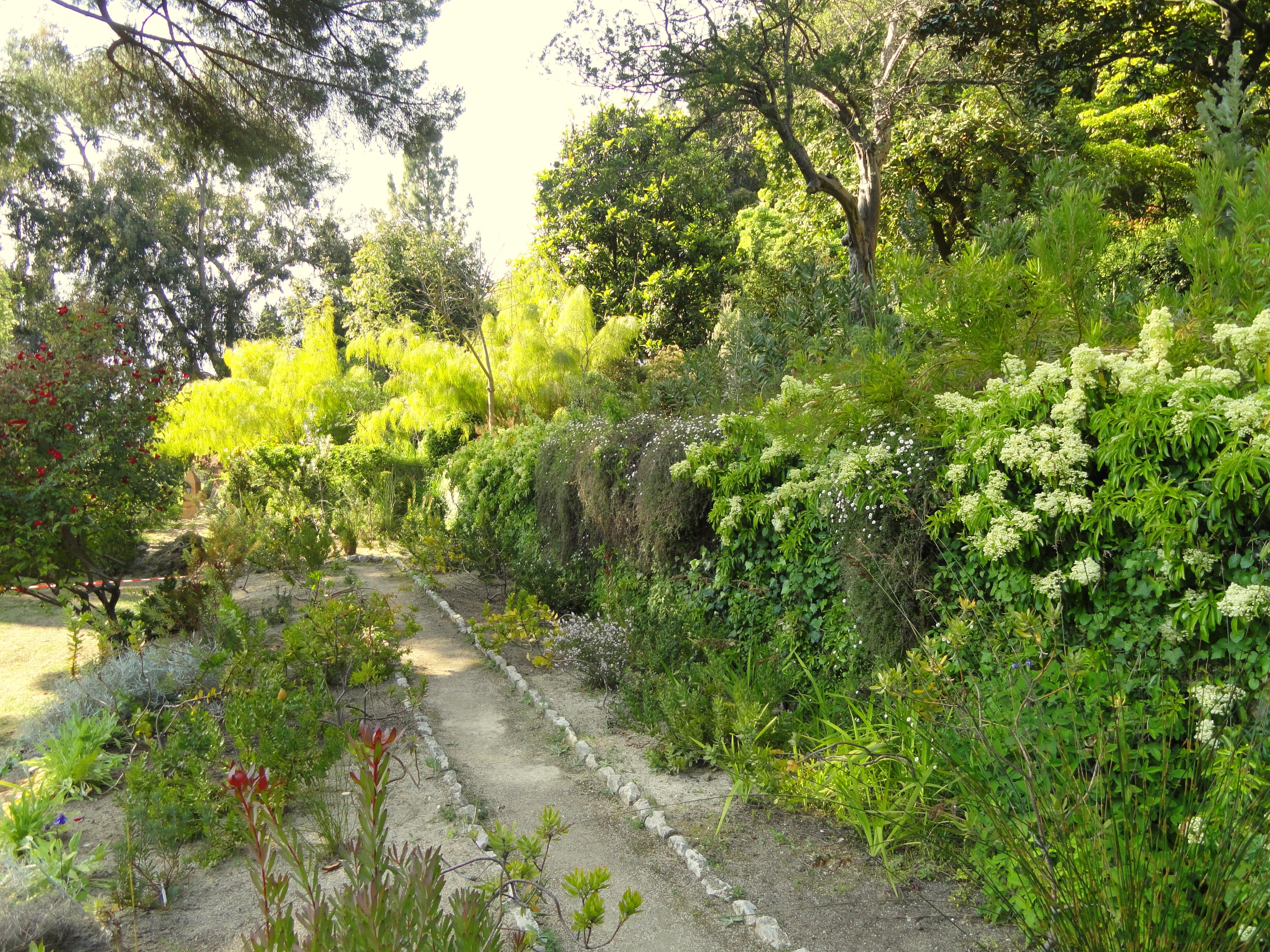 file jardin serre de la madone dsc04157 jpg. Black Bedroom Furniture Sets. Home Design Ideas