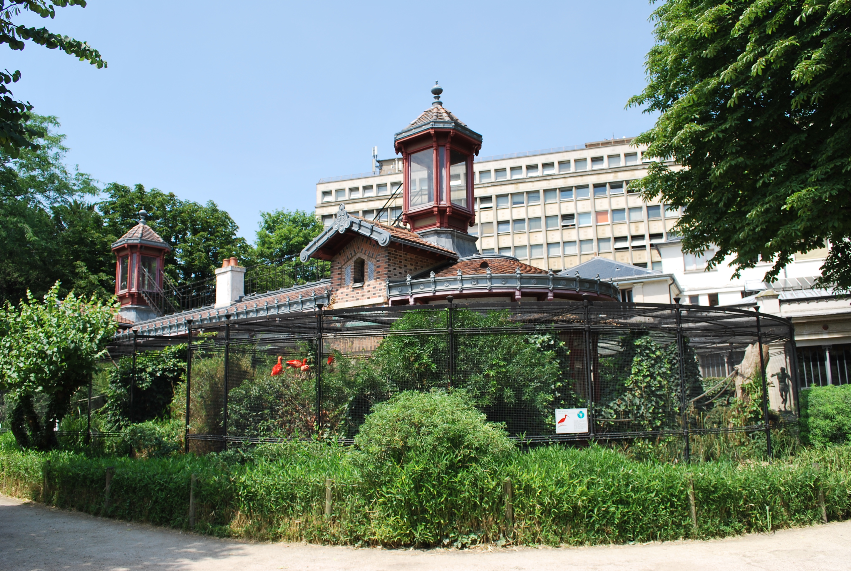 file jardin des plantes et museum national d 39 histoire On histoire des jardins wikipedia