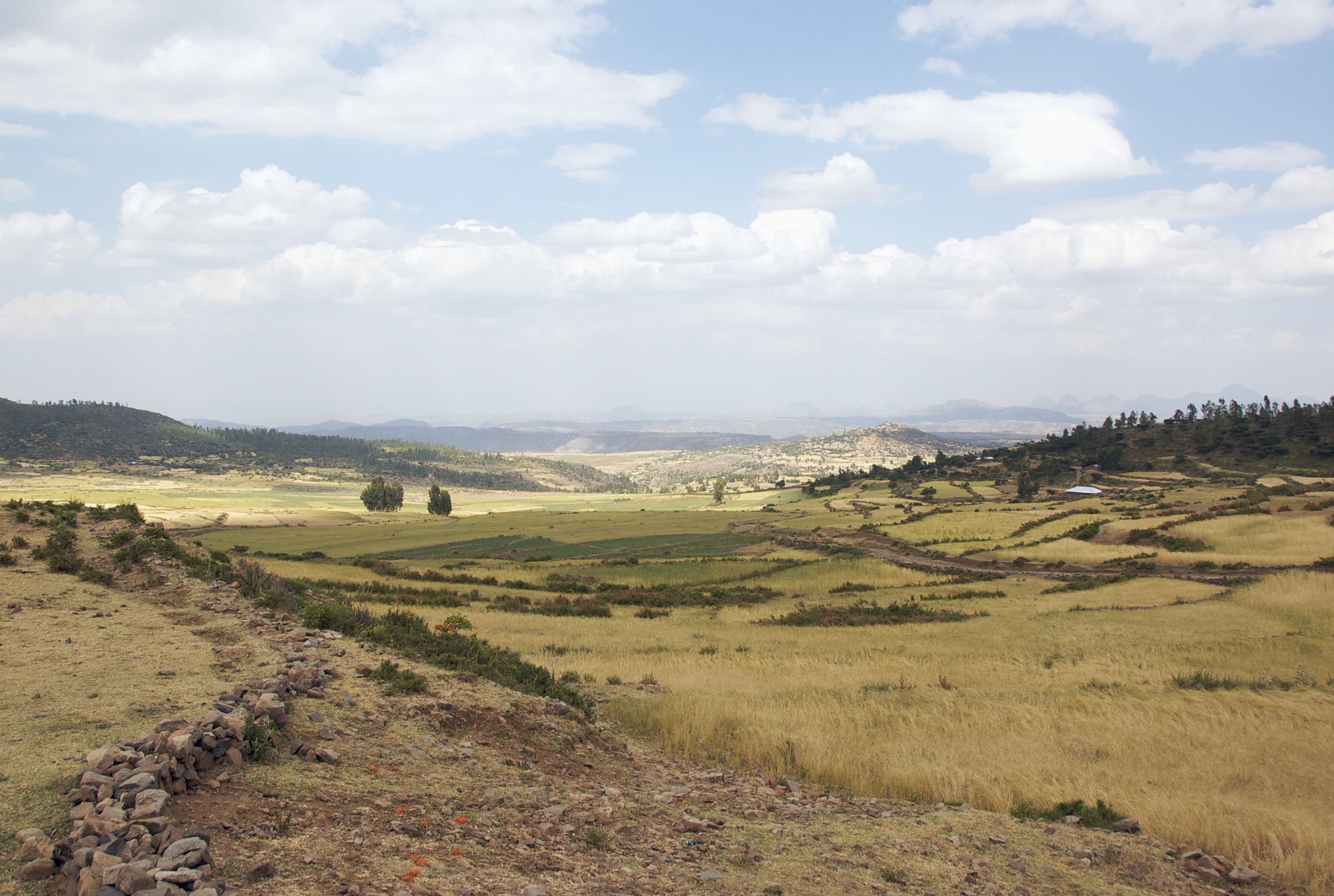 File landscape near axum ethiopia 2832717607 jpg for Nearby landscapers
