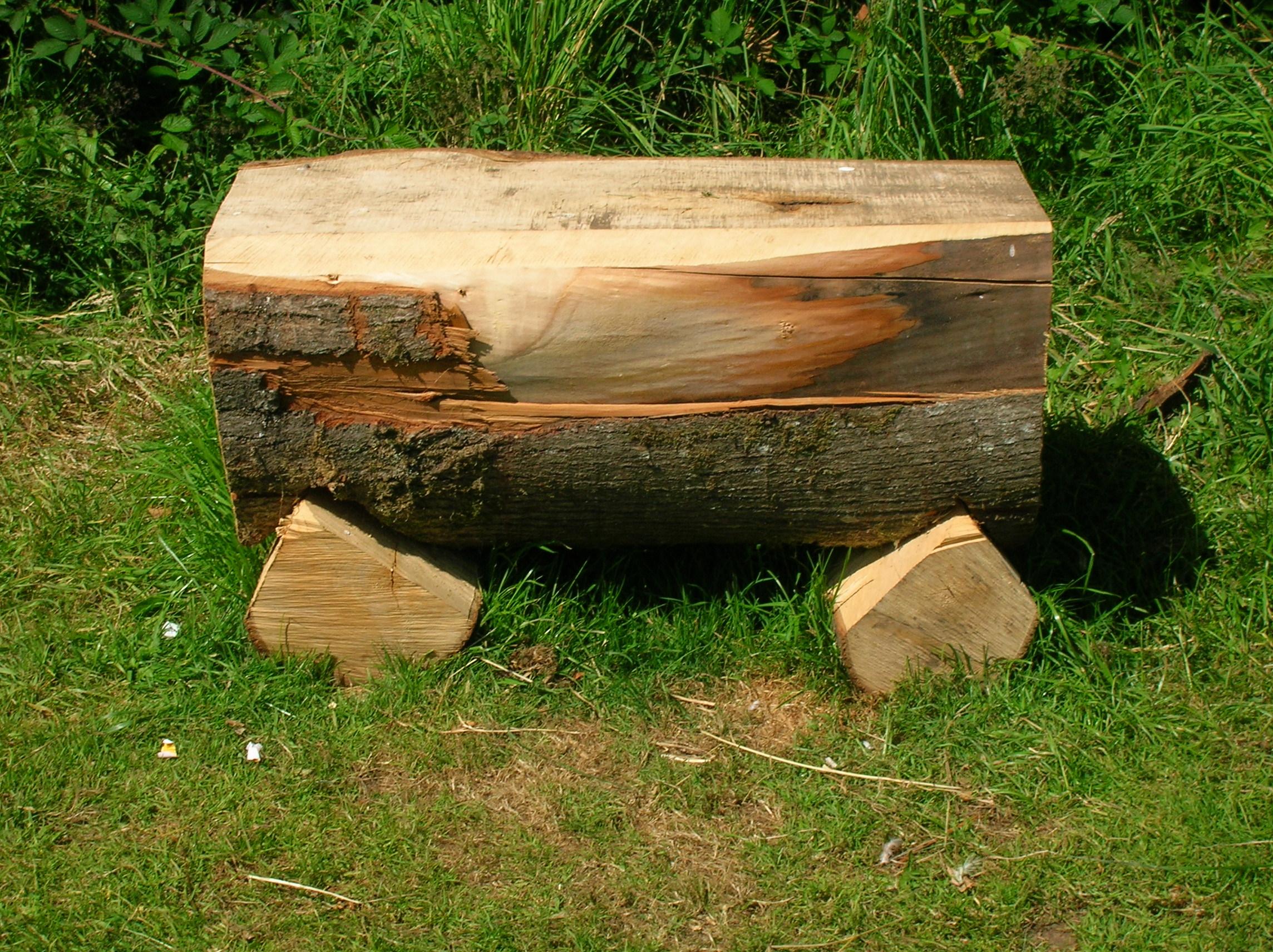 File:Log Seat - Spier's School.jpg - Wikimedia Commons