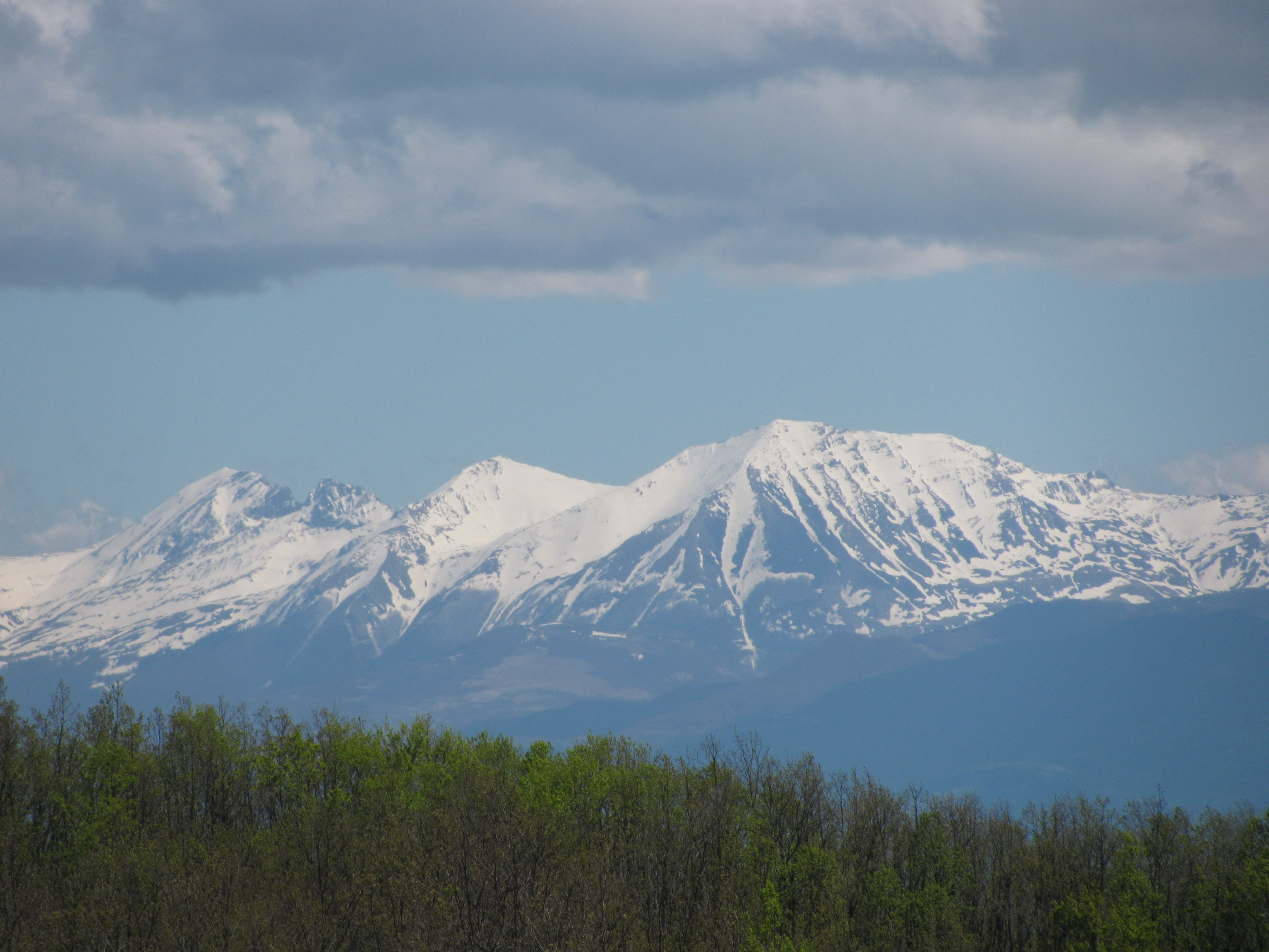 Foto malet e sharrit 91