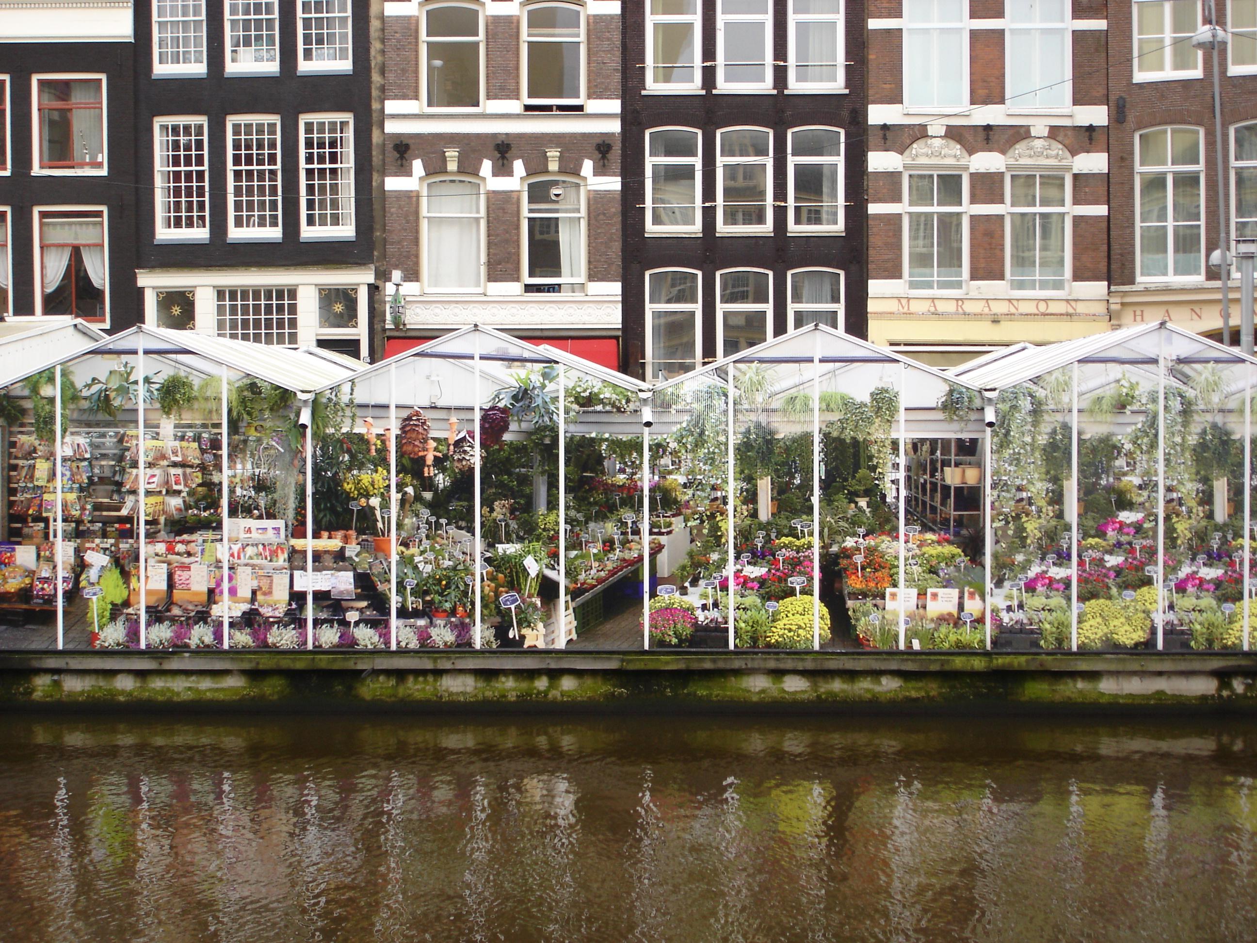 Que faire a Amsterdam? Top 10 activités et sorties (Tourisme Amsterdam) 2