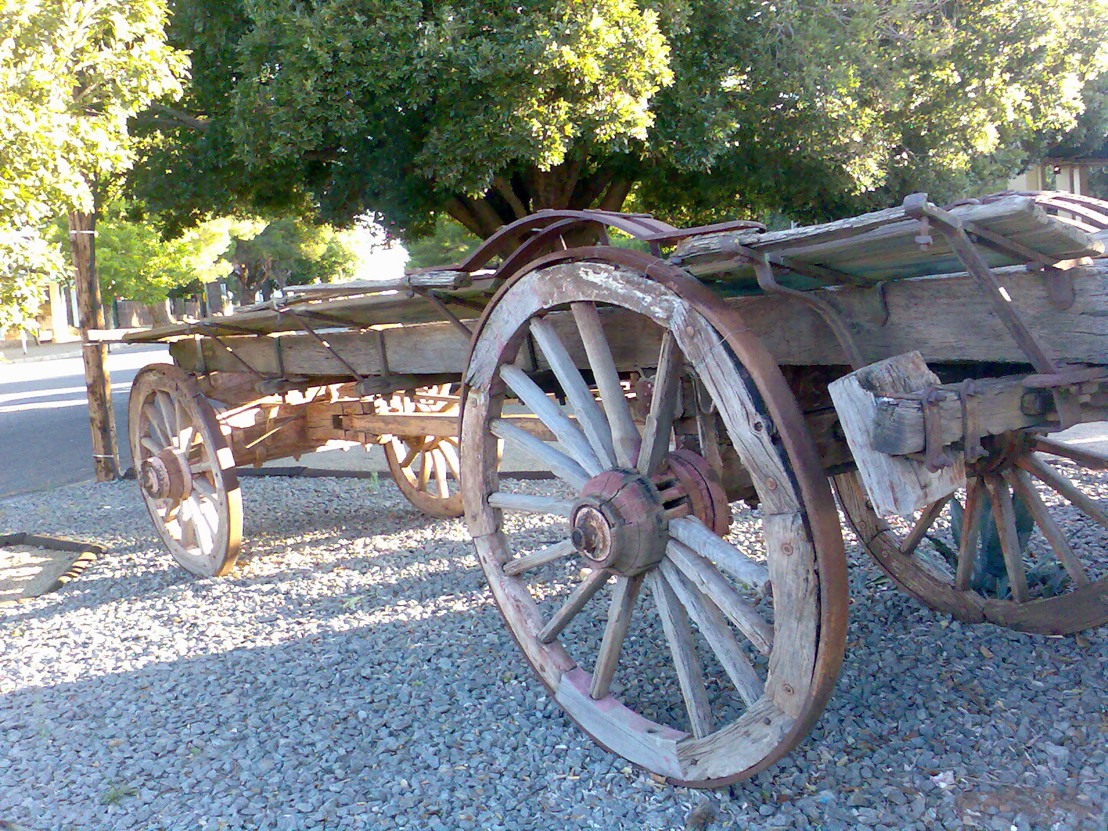 An Ox-wagon in Aliwal North, South Africa. Note the three missing spokes and the metal tyre.