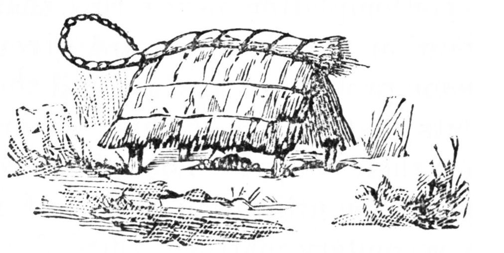 PSM V25 D786 Complex straw hut shaped idol.jpg