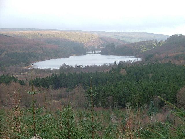Pentwyn Reservoir from Taf Fechan Forest - geograph.org.uk - 665078