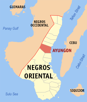 Map of Negros Oriental showing the location of Ayungon