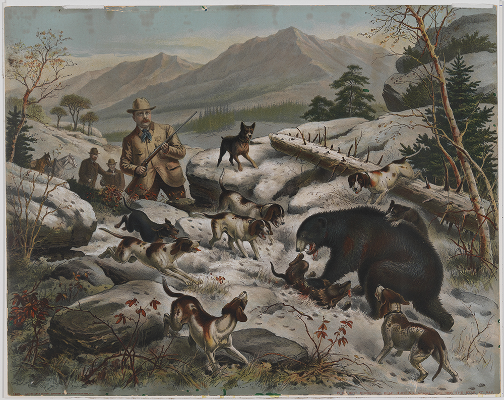 File President Roosevelt Bear Hunting The Bear At Bay