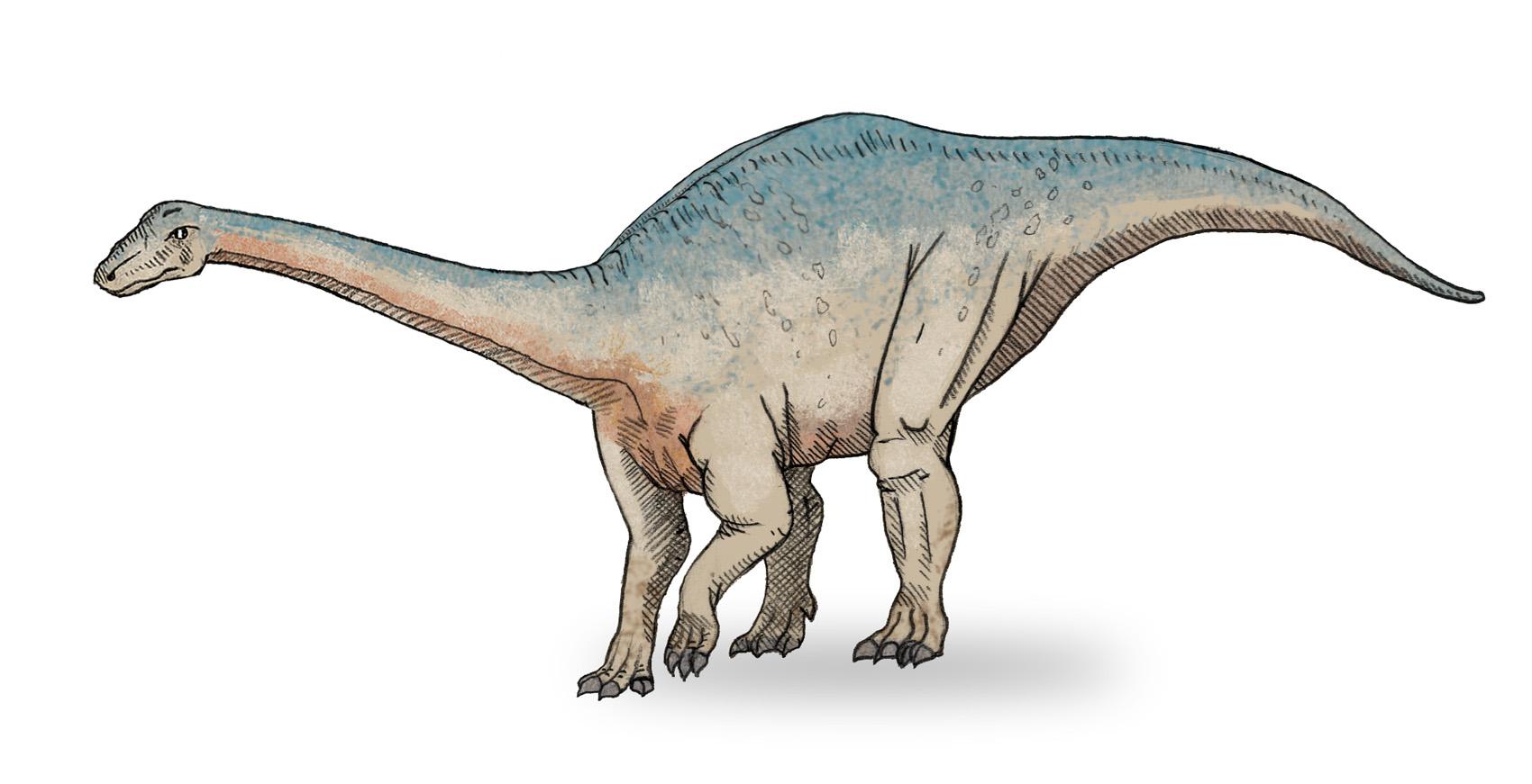Resultado de imagen para dinosaurio herbívoro de 93 millones de años de antigüedad en El Chocón