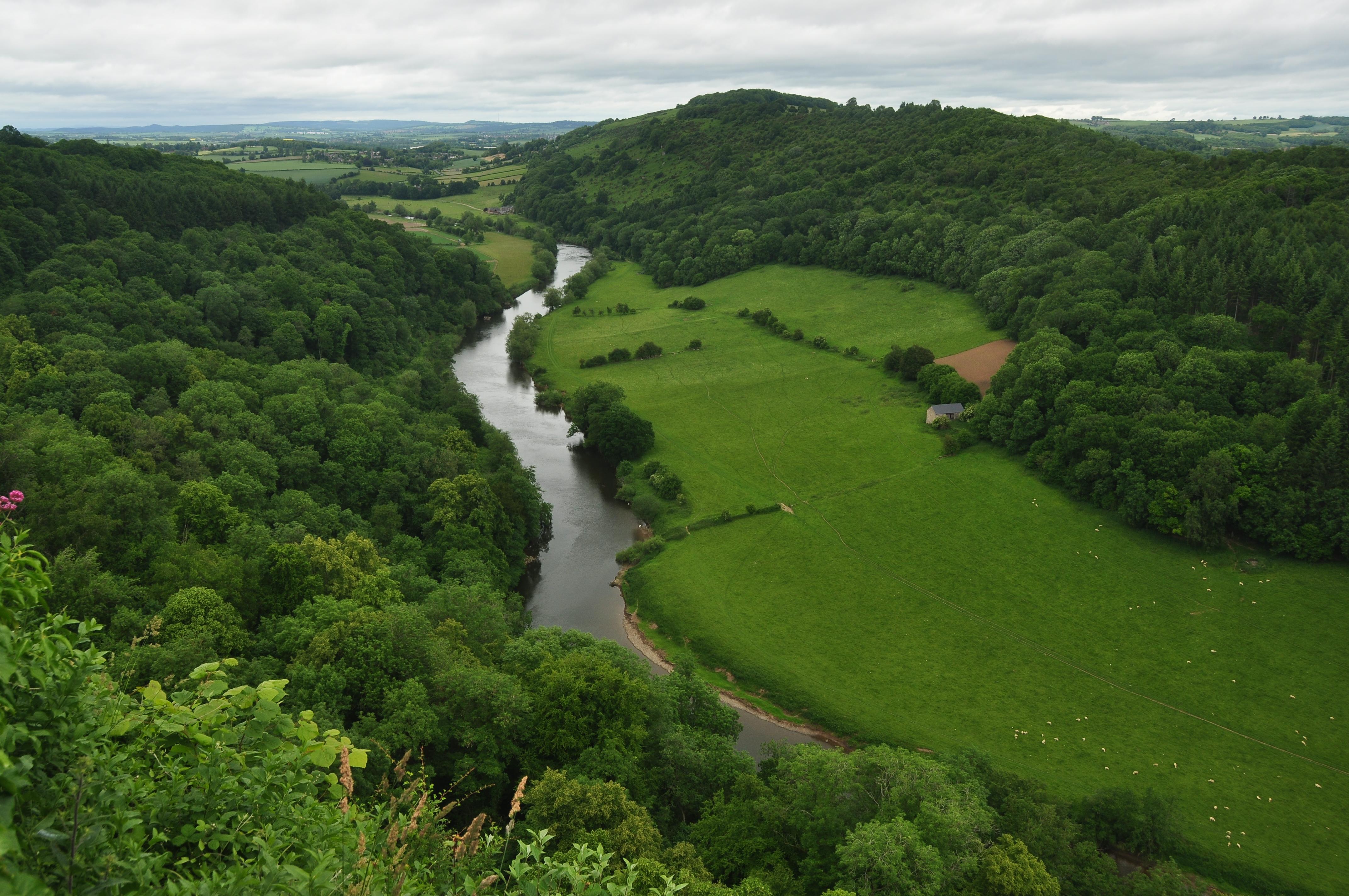 Forêt de Dean River_Wye_at_Symonds_Yat_%289752%29