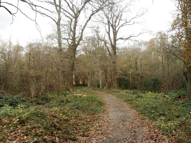 Scadbury Park Nature Reserve, Chislehurst - geograph.org.uk - 1053625