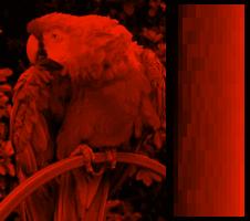 Ekrana kolortesto VGA 256colors monoa plasma.png