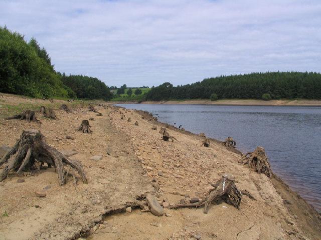 Thruscross Reservoir - geograph.org.uk - 28245