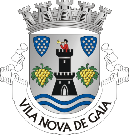 Image:VNG1.png