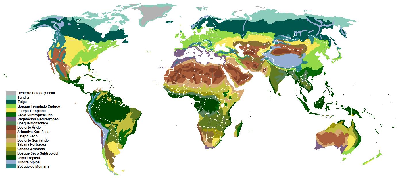 Biomas terrestres clasificados según vegetación