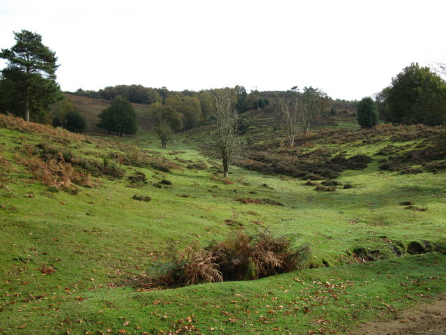 Wide valley at Hindhead Common - geograph.org.uk - 1562436