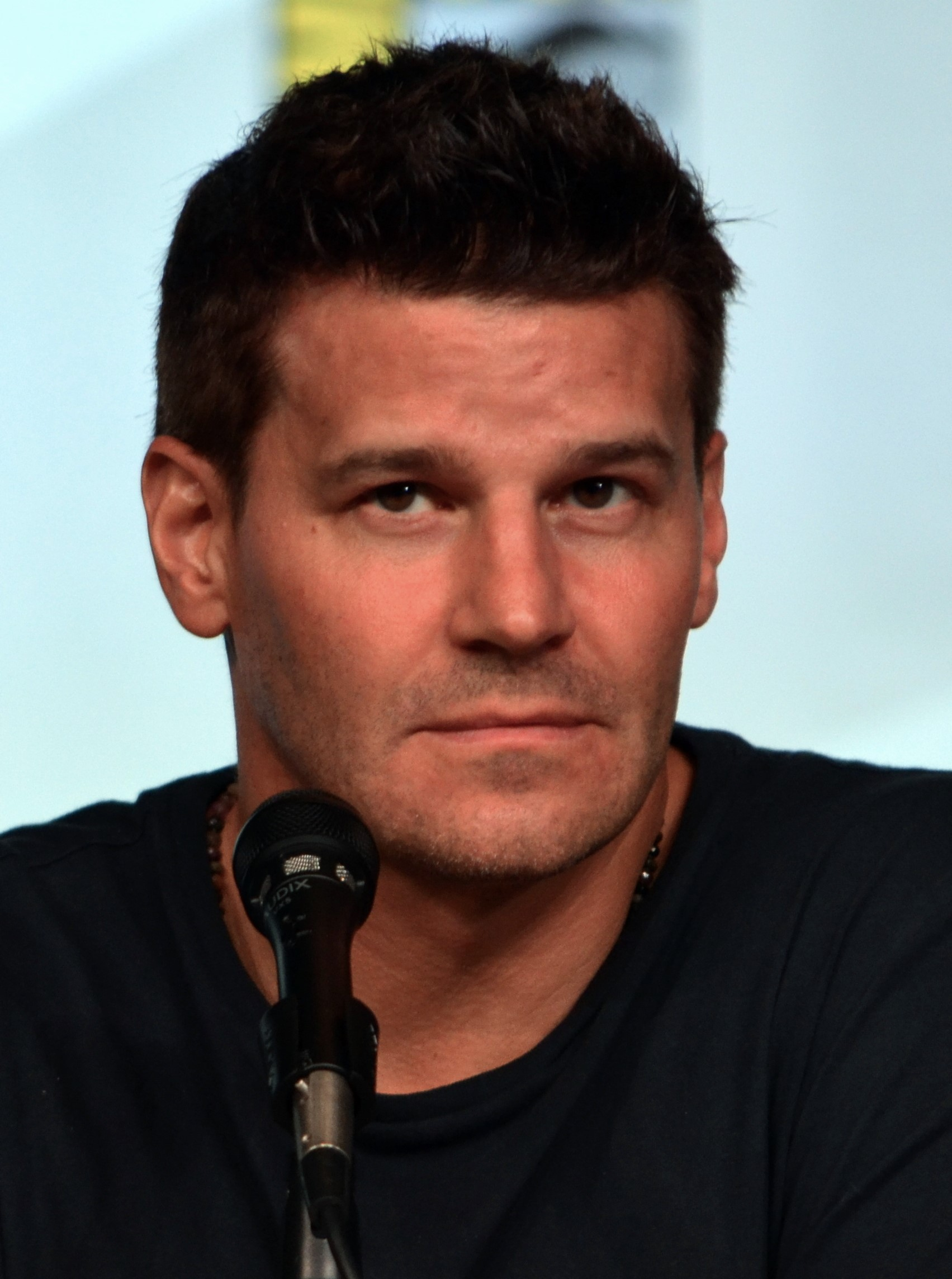 Il 49-anni, 185 cm alto David Boreanaz in 2018 photo