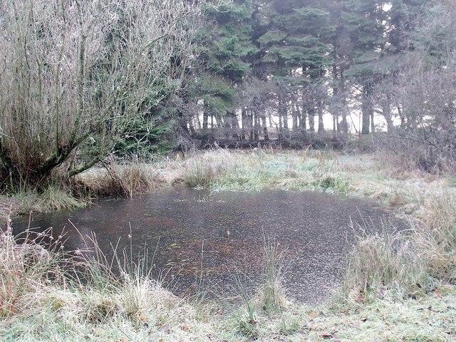 Gohbar Pond, Palacerigg - geograph.org.uk - 1617982
