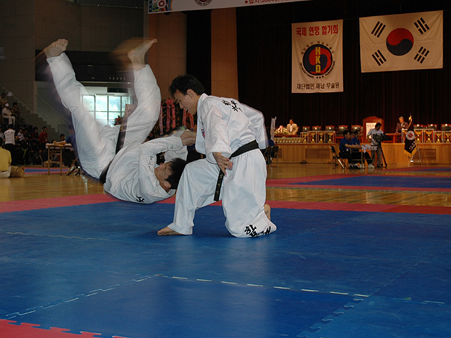 http://upload.wikimedia.org/wikipedia/commons/9/99/Hapkido4.jpg