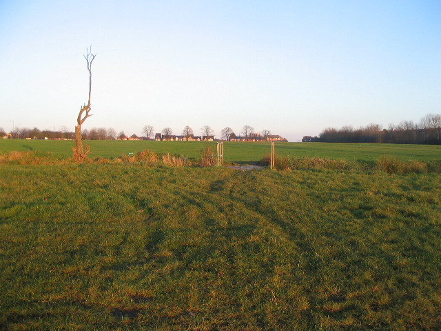 Hearsall Common playing fields - geograph.org.uk - 1101826