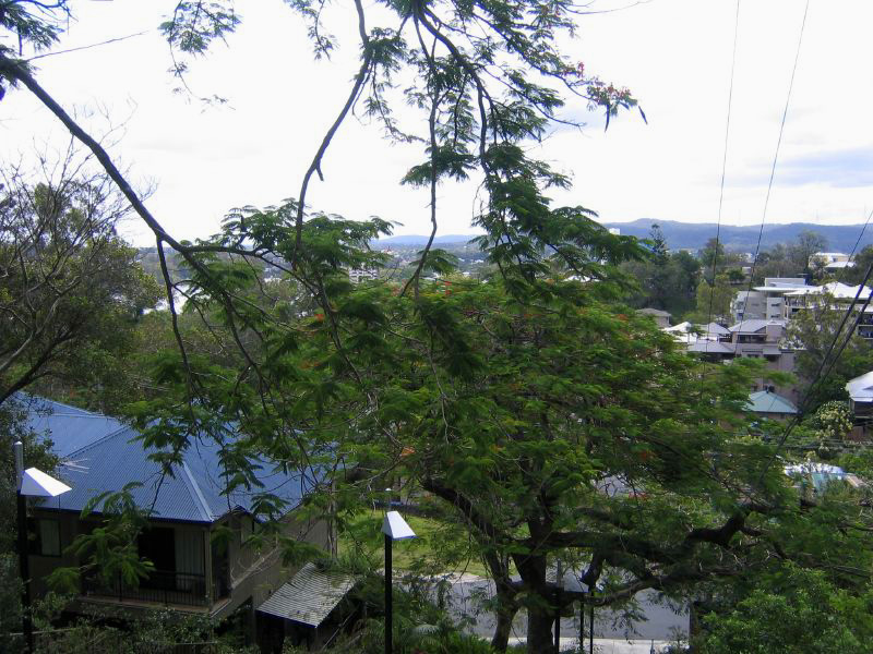 Image Result For St Lucia Queensland Wikipedia