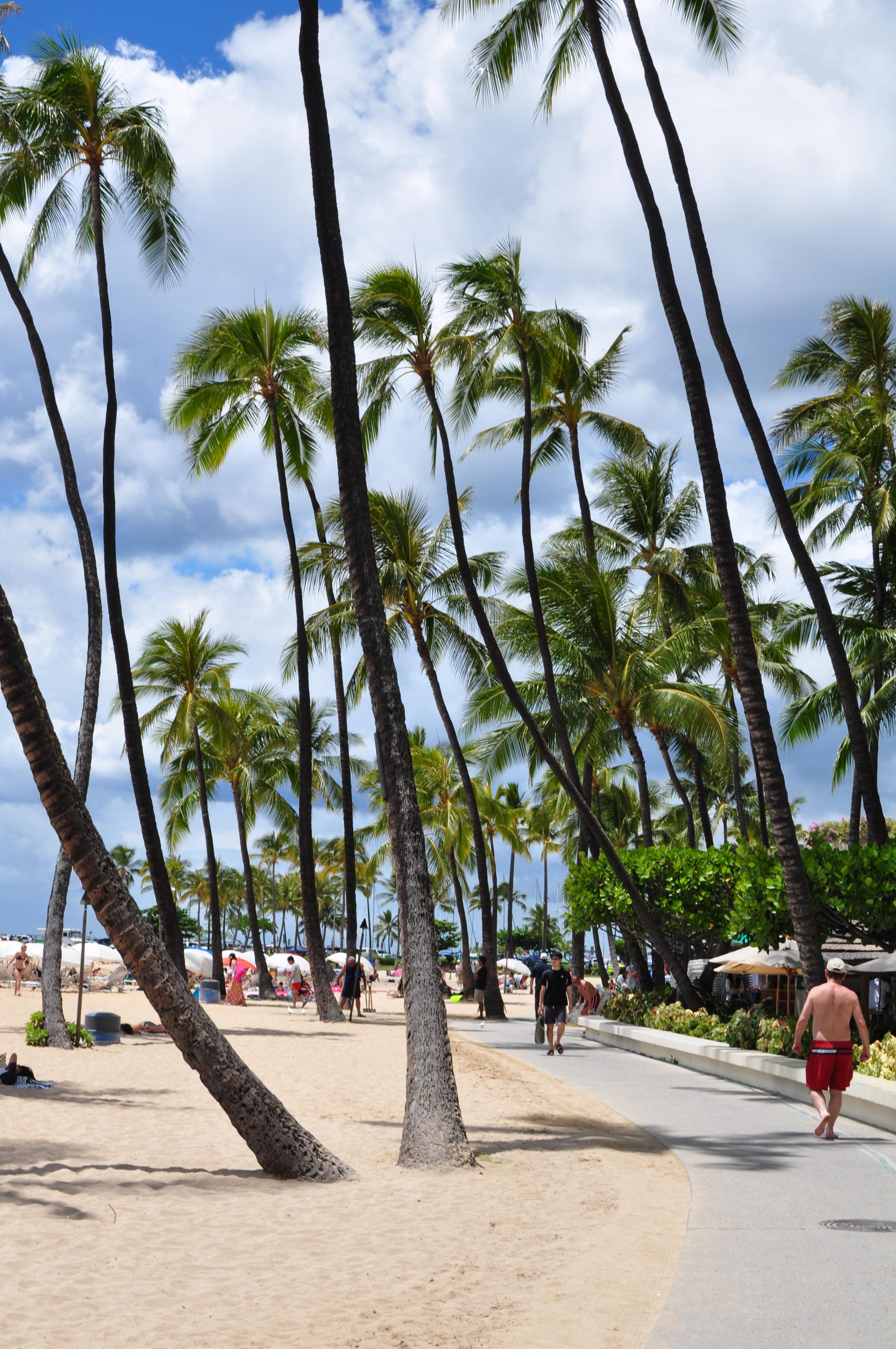 Turístico con todo incluido en Oahu - Venga uno, vengan todos! Revisión de Hilton Hawaiian Village Waikiki Beach
