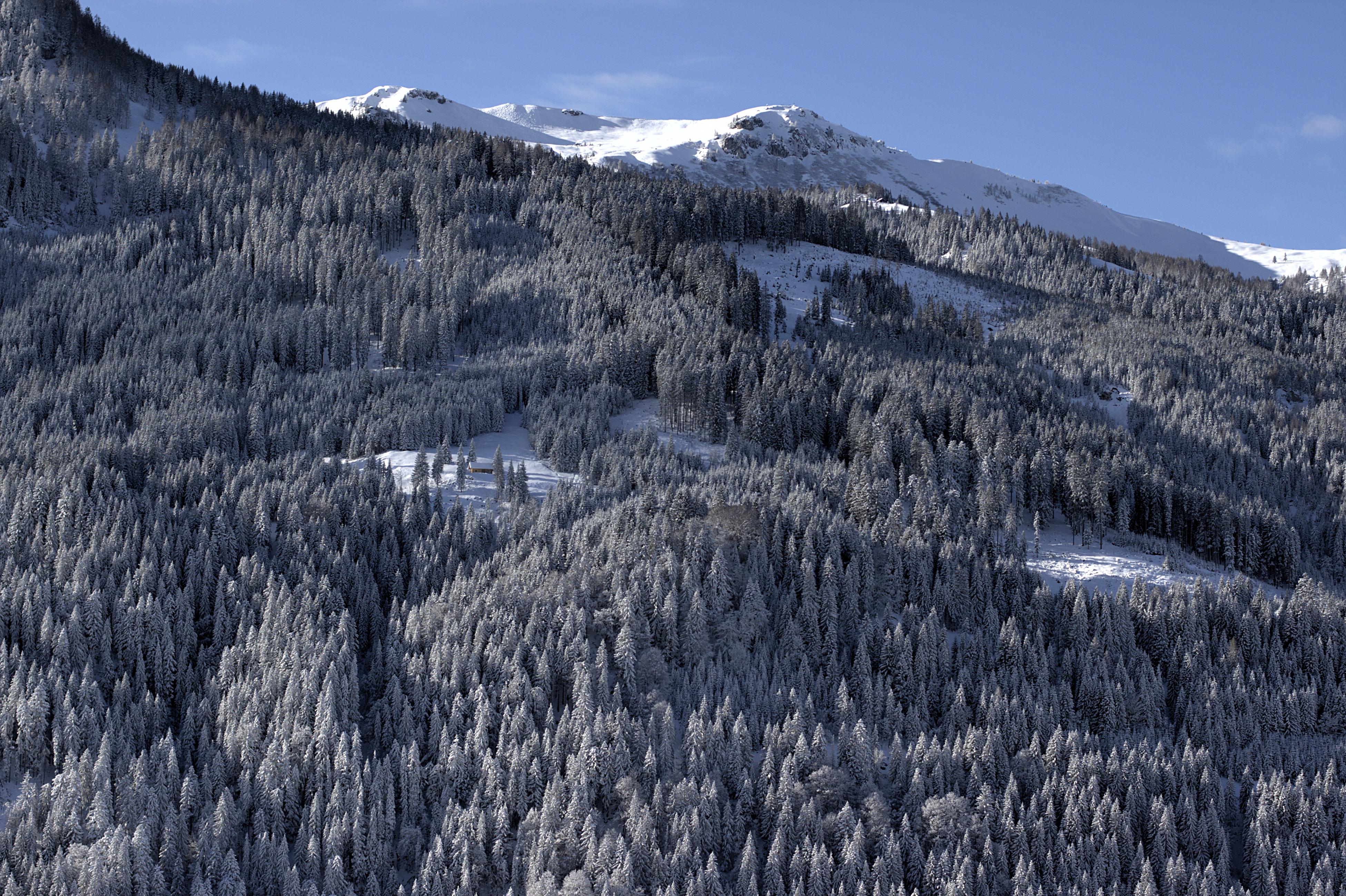 English: Austria, Salzburg, Kleinarl, Winterwo...