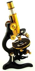 mikroskop bild