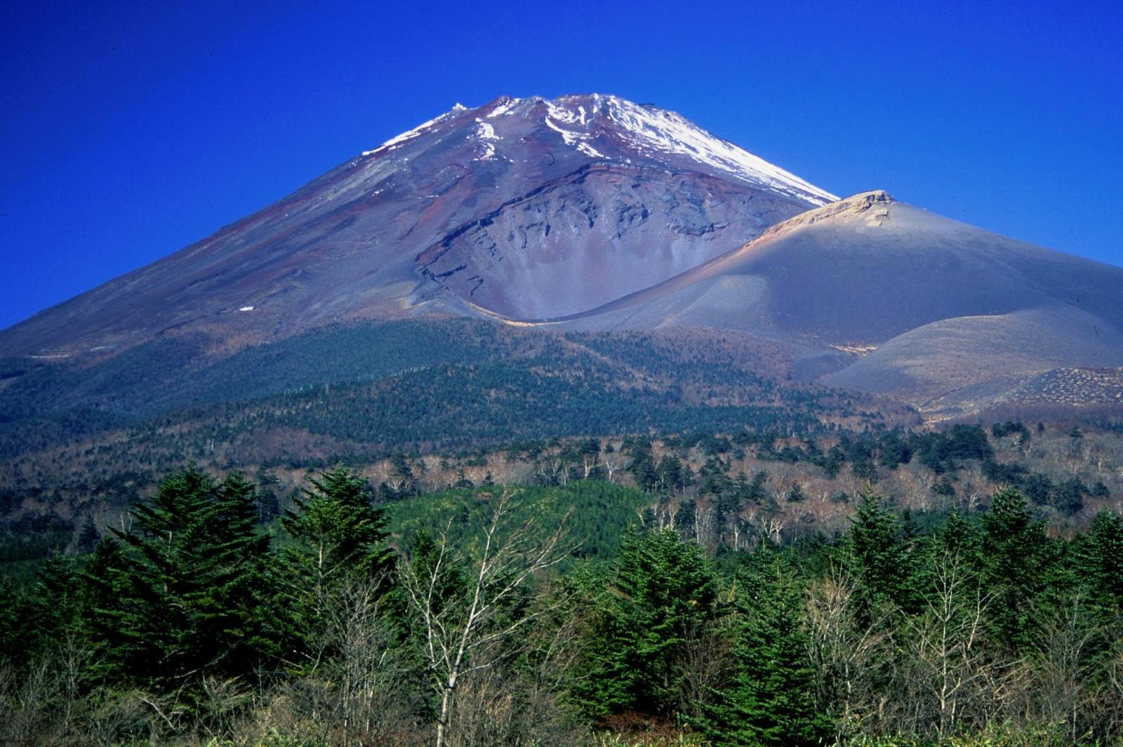 噴火 浅間 生き埋め 山