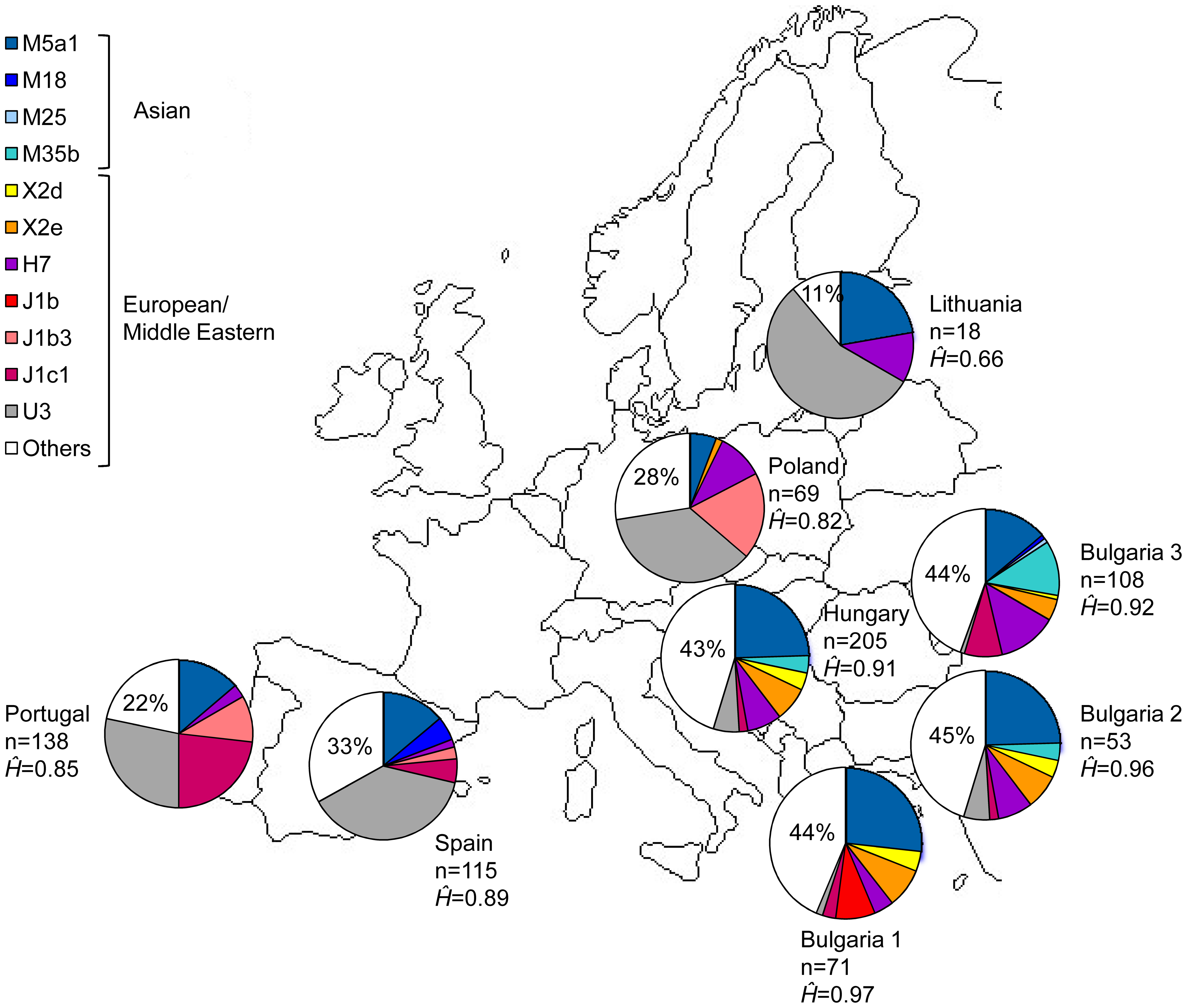 File:MtDNA haplogroups corresponding to founder lineages in