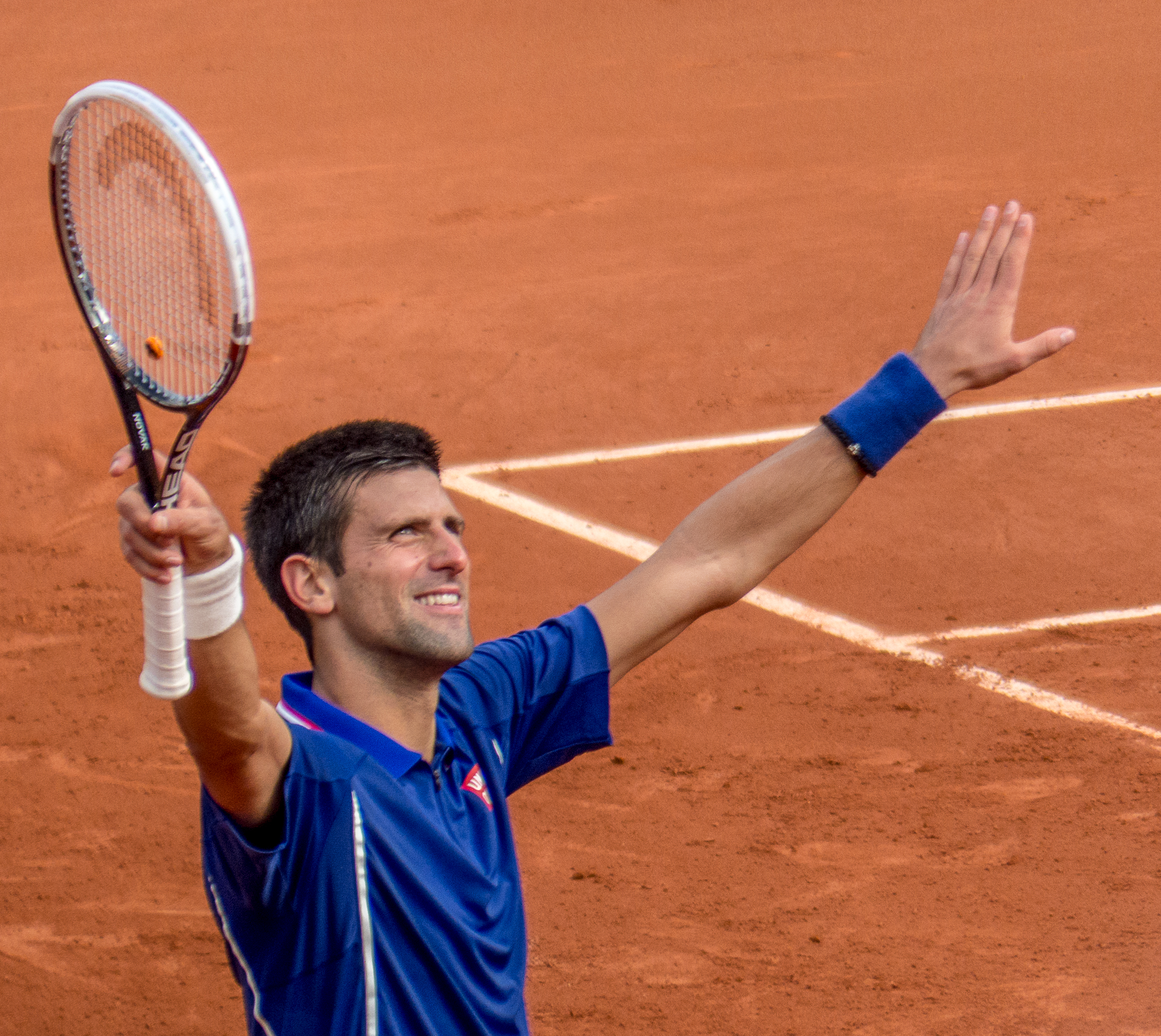 Did Novak Djokovic hurt his ankle again... or was it all just a performance? Image Source: Wikimedia.org