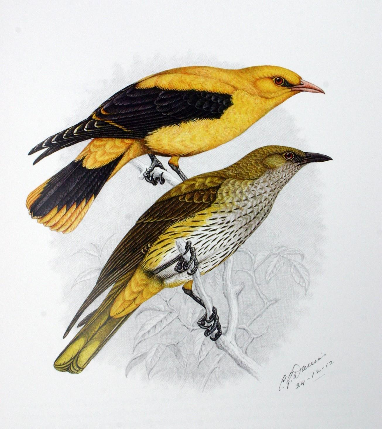 Рисунок википедия - 4c7b