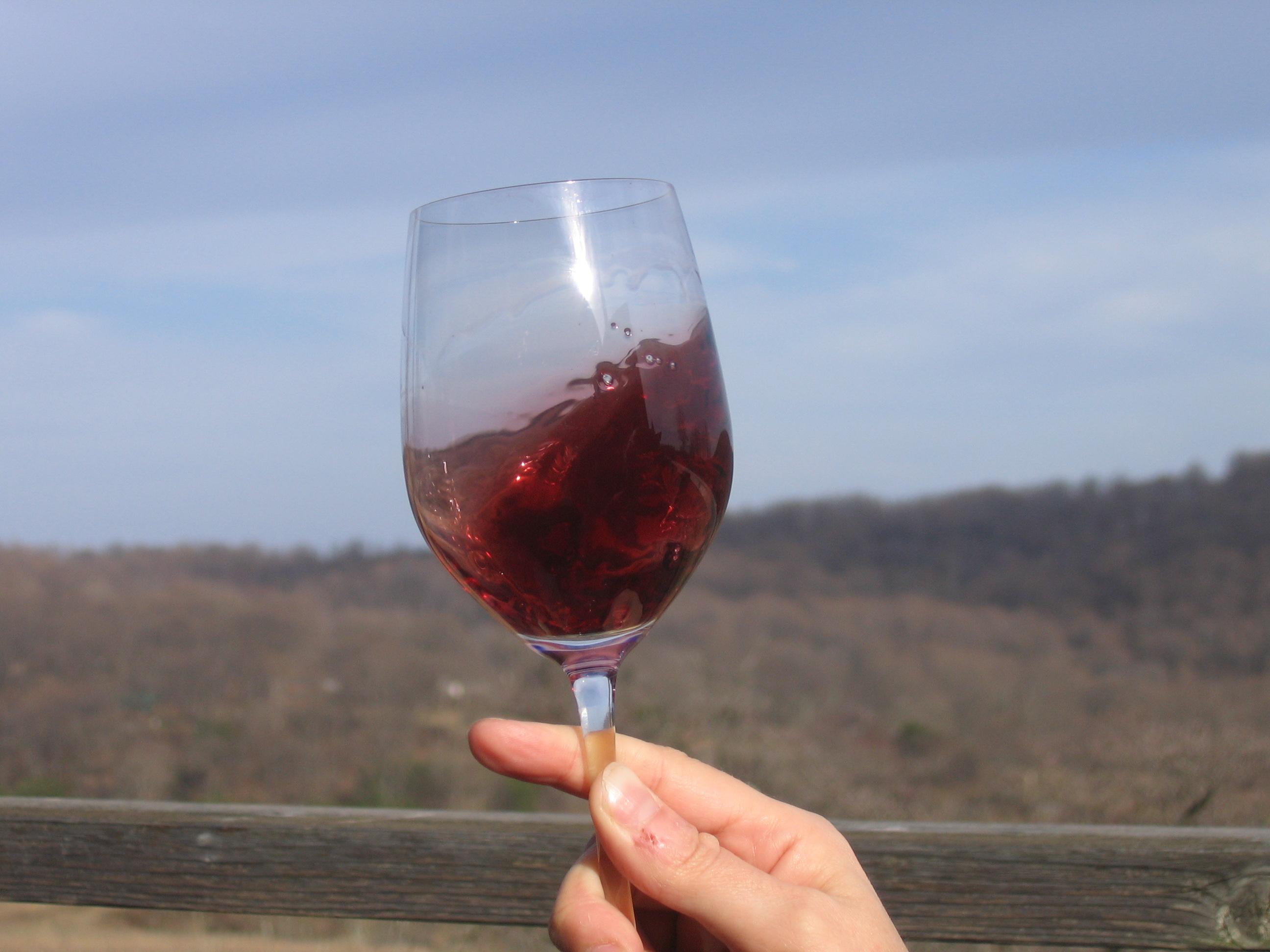 vinos del mundo