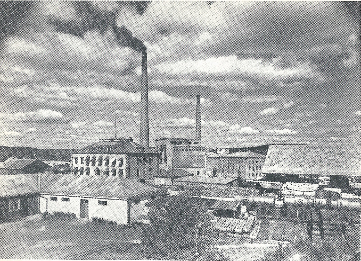 FileSchauman Plywood Factory Pre 1950