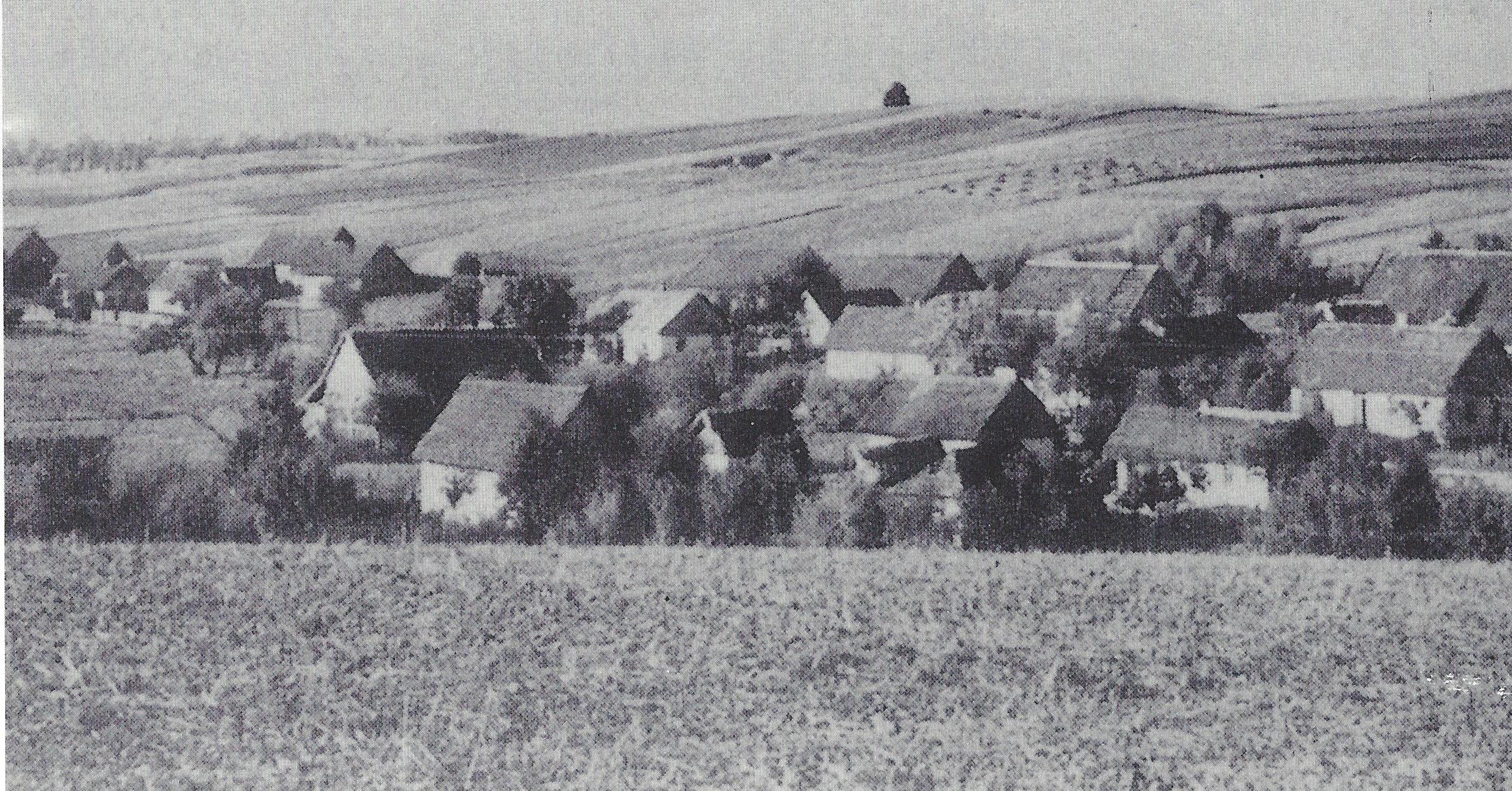 Wolynien
