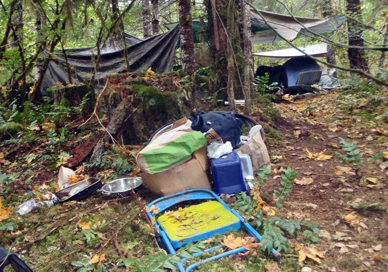 Trash Issues at Cougar Reservoir, Willamette National Forest (34727462102).jpg Trash Issues at Cougar Reservoir, Willamette National Forest