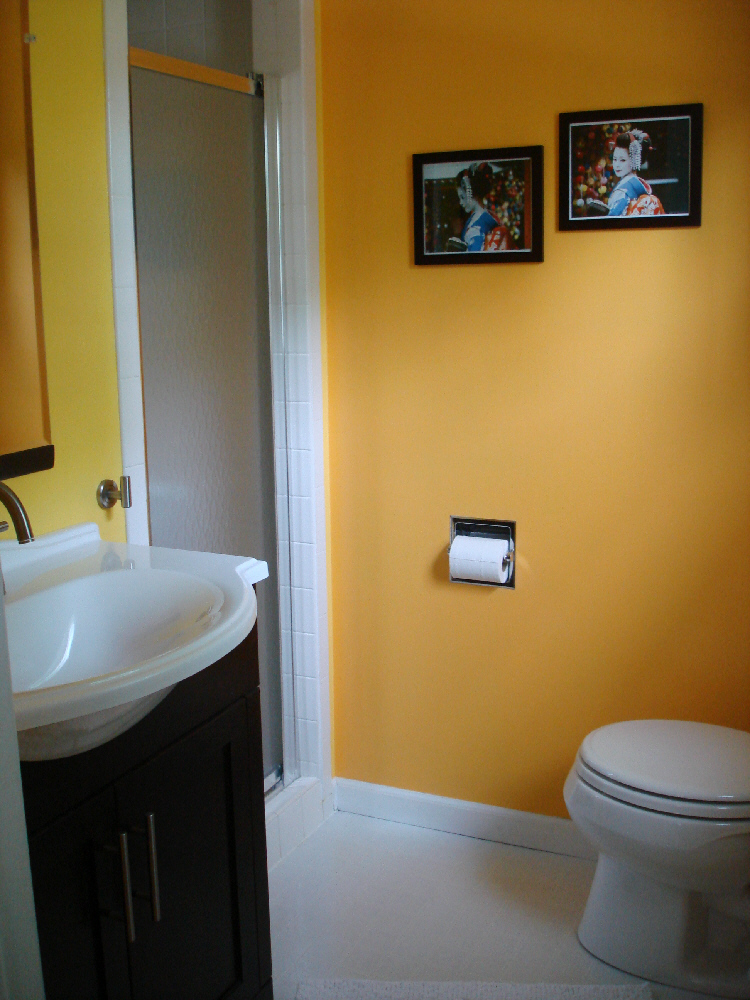 Small Bathroom Remodeling Costs