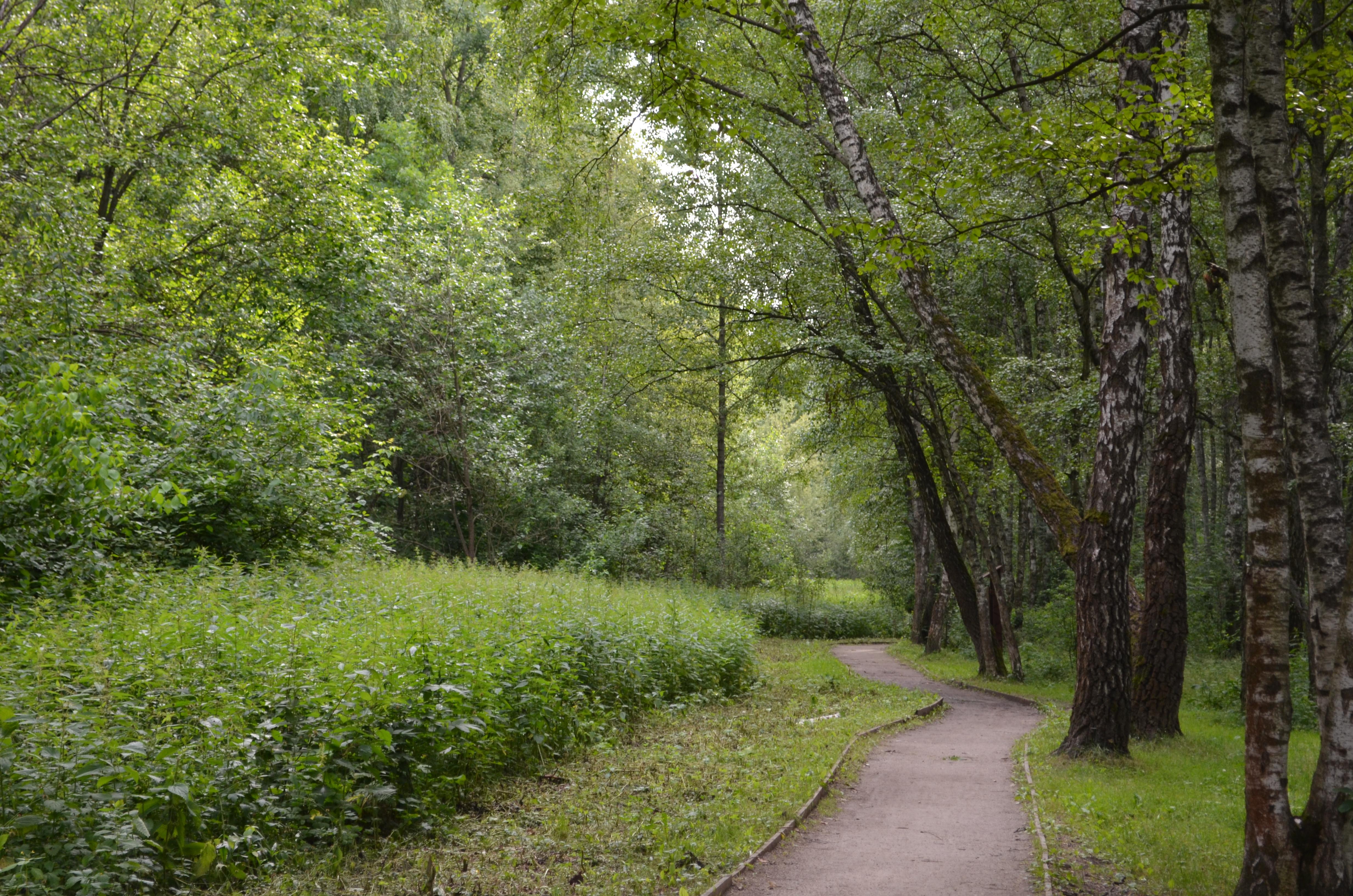 Природный парк «Тушинский» — Википедия d0cec5c9390