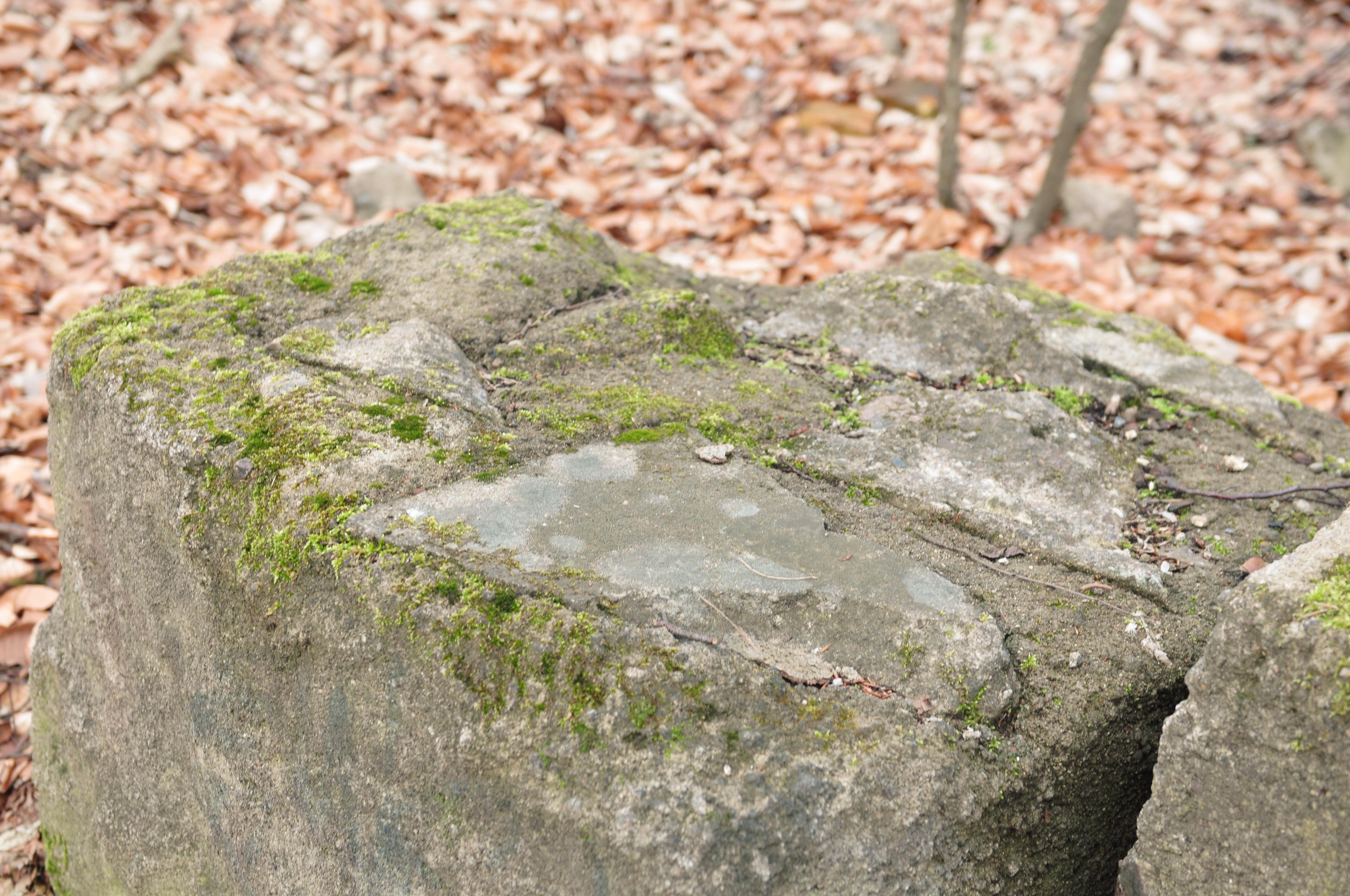 14-04-07-franzosenbunker-eberswalde-22.jpg
