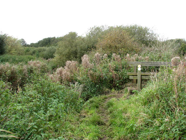 Between river and drain - geograph.org.uk - 1020797