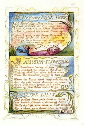 an analysis of personification in my pretty rose tree by william blake The nightingale & the rose: themes & analysis william blake: the eagle by alfred lord tennyson: summary & analysis related study materials.