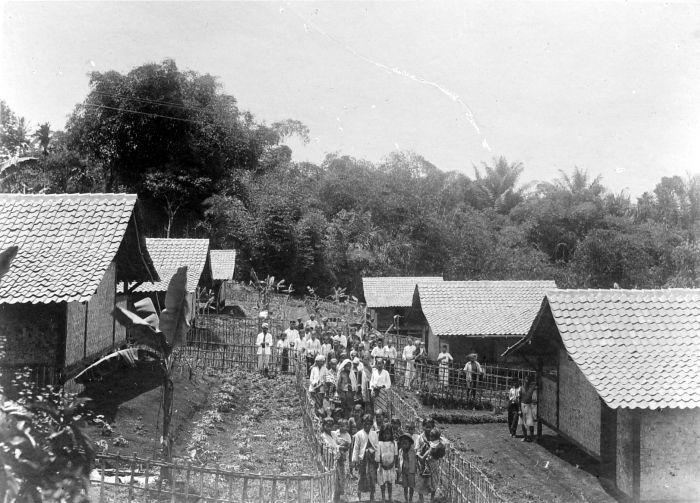 filecollectie tropenmuseum koeliewoningen van de thee en
